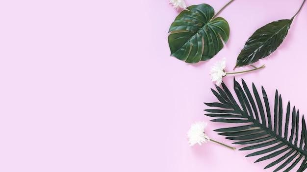 Opgeheven mening van witte bloemen en kunstmatige groene bladeren op purpere achtergrond