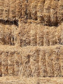 Opgeslagen in een pakhuis, strak gebonden balen strograan, op een boerderij
