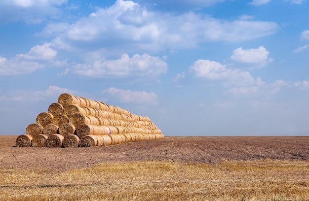 Opgestapeld op de hooiberg van stro na de oogst van granen
