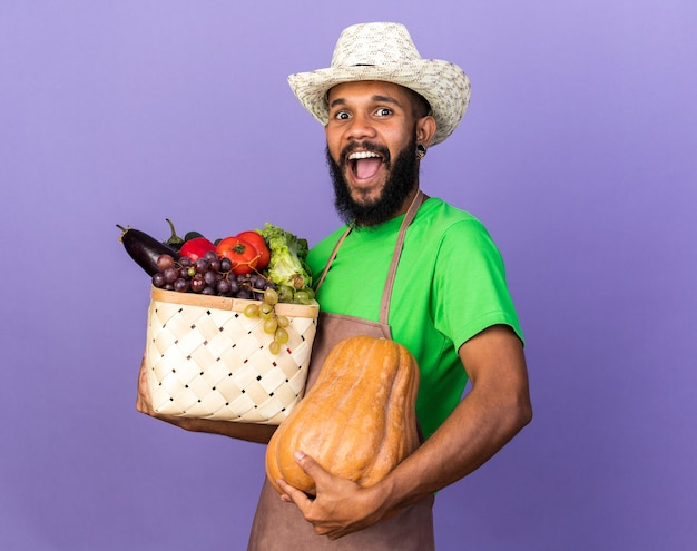 Opgewonden jonge tuinman afro-amerikaanse man met een tuinhoed met een groentemand met pompoen geïsoleerd op een blauwe muur