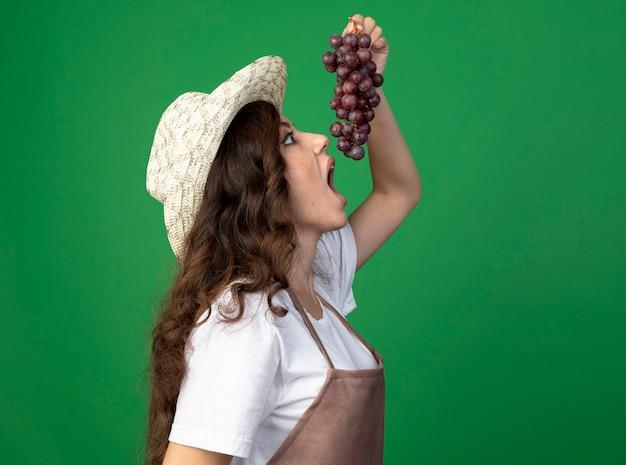 Opgewonden jonge vrouwelijke tuinman in uniform dragen tuinieren hoed staat zijwaarts alsof hij druiven bijt die op groene muur worden geïsoleerd