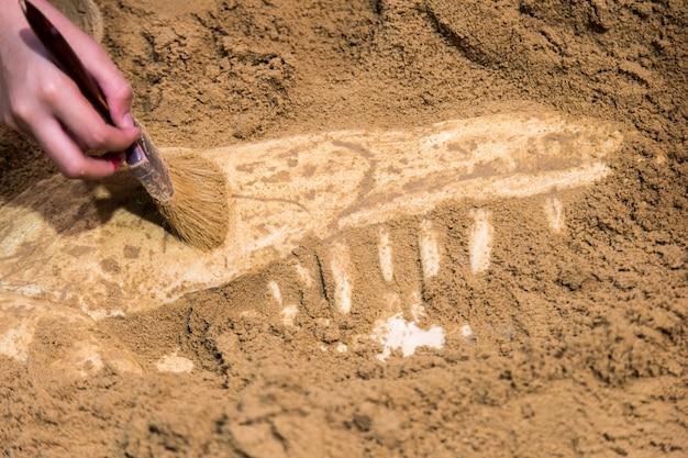 Opgravende fossielen van dinosaurussen