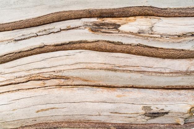 Opluchting textuur van de bruine schors van een boom close-up
