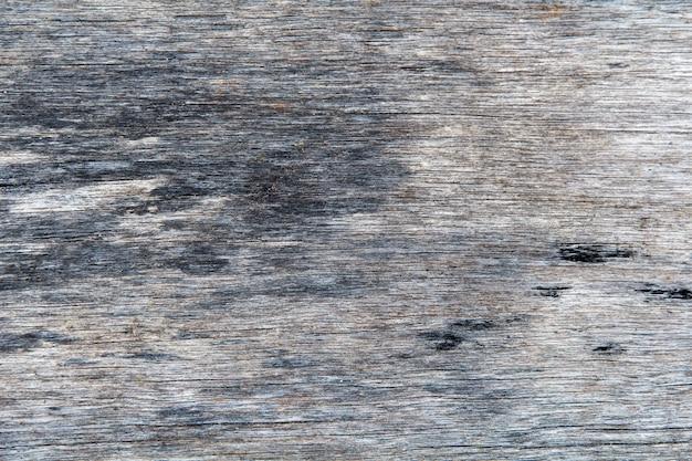 Oppervlak van de oude snede van de boom