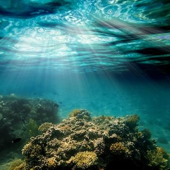 Oppervlaktezand op het strand onder water