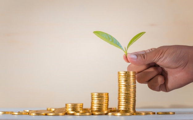 Opslaan, business groeien concept achtergrond