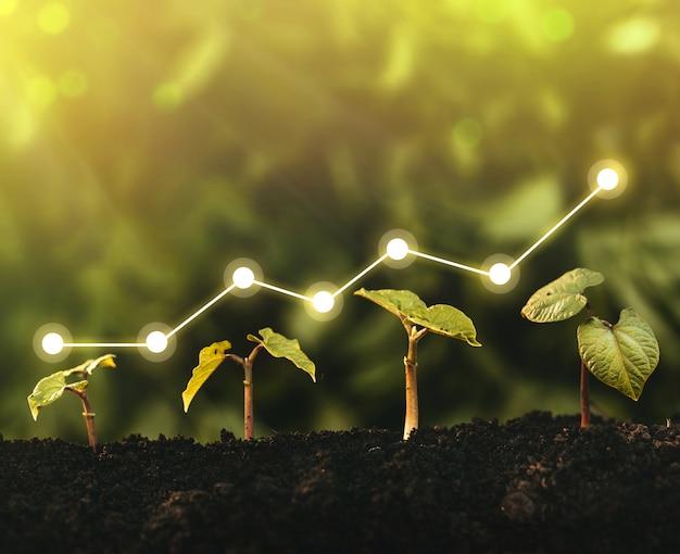 Opstarten van bedrijfslandbouw