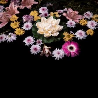 Opstelling van therapeutische bloemen voor spa