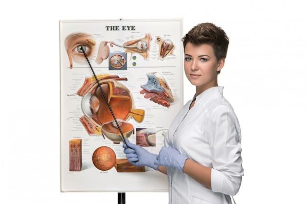 Opticien of oogarts vrouw vertellen over de structuur van het oog