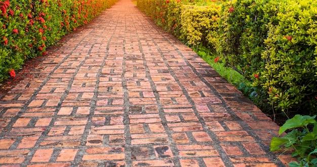 Oranje betonnen pad in de bloementuin