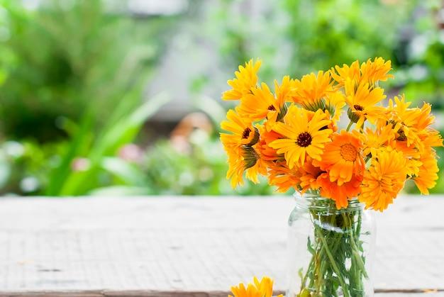 Oranje bloem van calendula in glazen pot