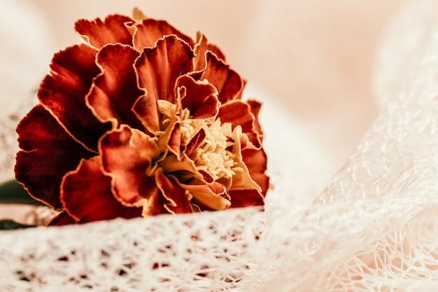 Oranje bloemen goudsbloem lokale flora van azië arrangement ansichtkaart stijl vintage