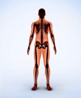 Oranje digitaal skelet