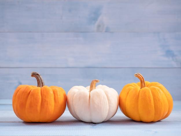 Oranje en witte pompoenen. gebruik voor halloween-concept.