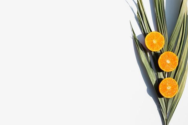 Oranje fruit en bladeren