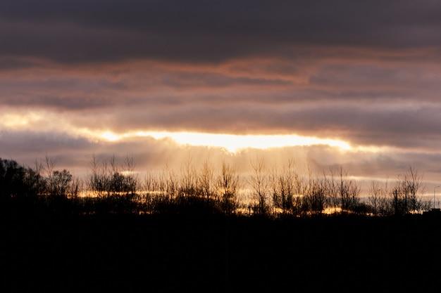 Oranje kleurrijke zonsondergang met donkere bomen en power line silhouet. landelijk avondlandschap, wazig.