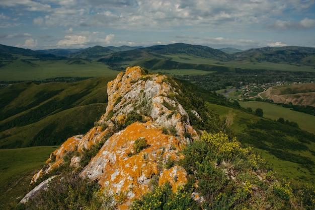 Oranje korstmos op oude rotsen in altai. landschap van heuvelachtig terrein.