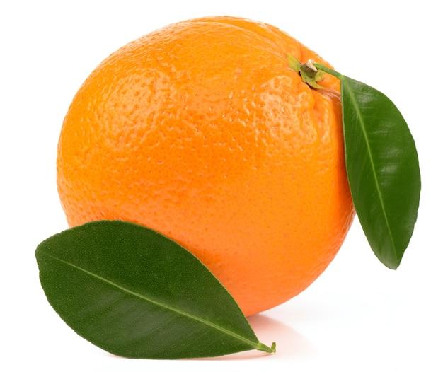 Oranje op witte achtergrond