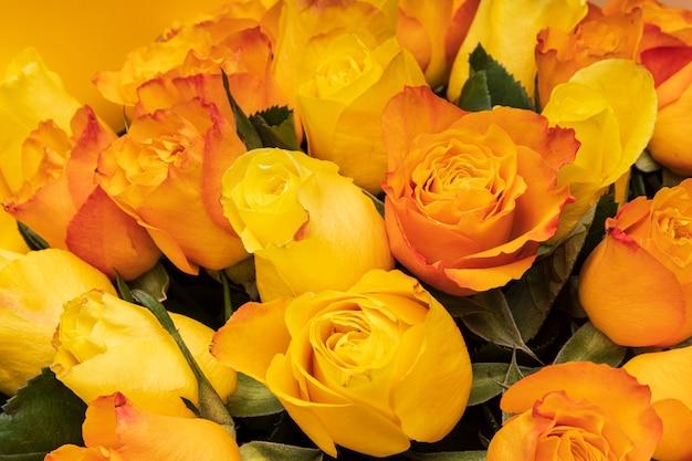 Oranje rozenclose-up. bloemen achtergrond. boeket bloemen. hoge kwaliteit foto