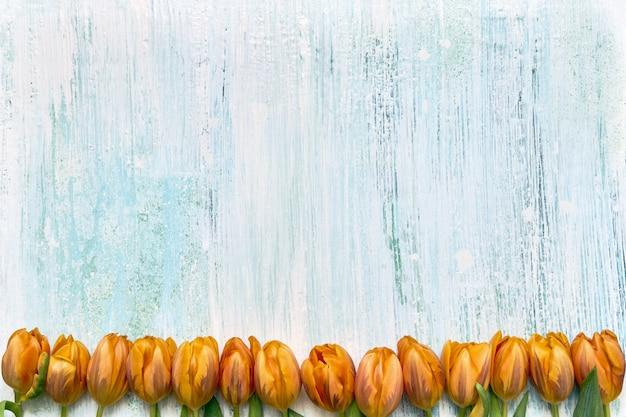 Oranje tulpengrens op lichtblauwe achtergrond. ruimte kopiëren, bovenaanzicht. vakantie achtergrond