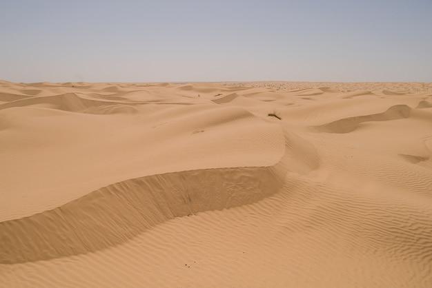 Oranje zandduinen in de sahara woestijn