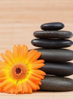 Oranje zonnebloem en een zwarte stenenstapel