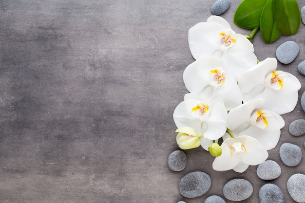 Orchidee en spa stenen op een stenen achtergrond. spa en wellnesscène.