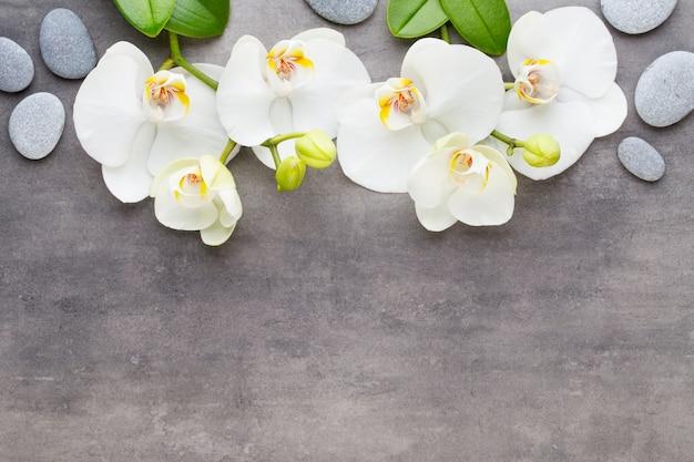 Orchidee en spa stenen op een stenen achtergrond. spa- en wellnessscène.