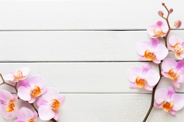 Orchideebloem op de houten pastel achtergrond. spa- en wellnessscène.