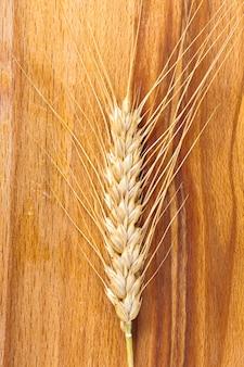 Oren van tarwe op een jute