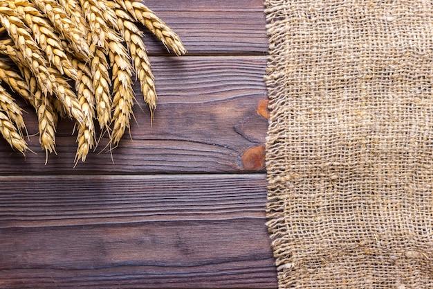 Oren van tarwe op zwarte achtergrondtextuur, tarwe op jute