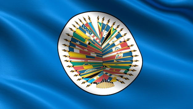 Organisatie van de amerikaanse vlag