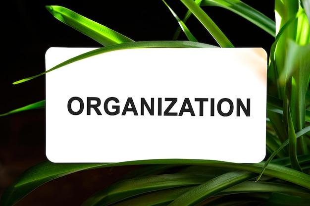 Organisatietekst op wit omgeven door groene bladeren
