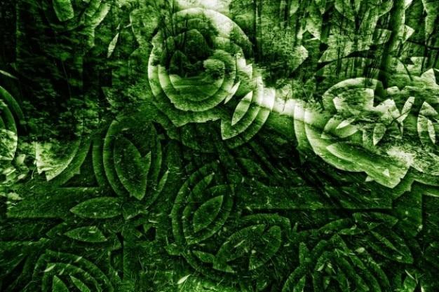 Organische abstracte