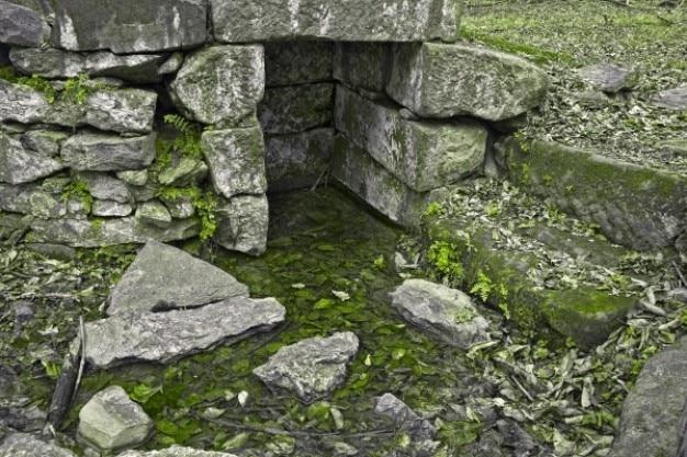 Organische ruïnes hdr