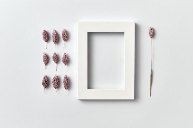 Organische samenstelling van dennenappels en rechthoekig leeg frame voor tekst op een lichtgrijze muur. bovenaanzicht.