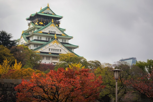 Osaka castle in de herfst