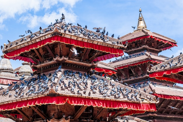 Oud gebouw met veel duiven op de daken op zonnige dag met bewolkte blauwe hemel