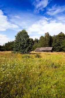 Oud houten verlaten huis. het ligt op het platteland.