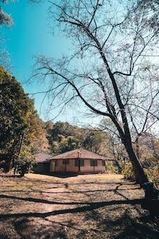 Oud huis in het bos de heldere hemel van de lentedag