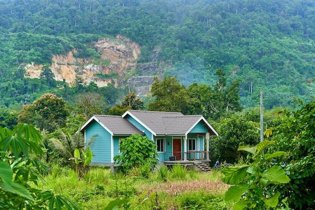 Oud lief huis in de jungle. platteland in tropische strakke jungle.
