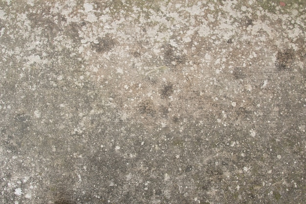 Oude beschimmelde betonnen muur