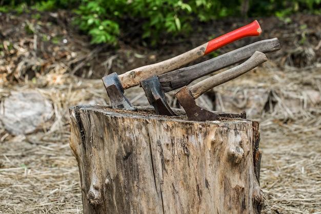 Oude bijl vast in een boomstronk