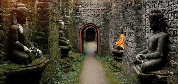 Oude boeddhabeelden in oranje kaft
