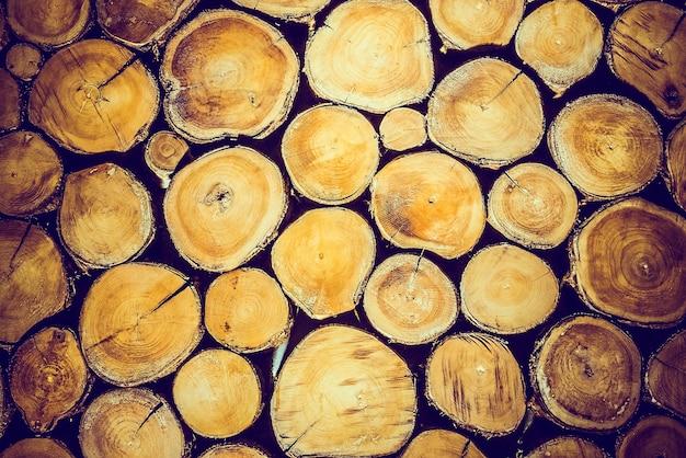 Oude boomstammen textuur