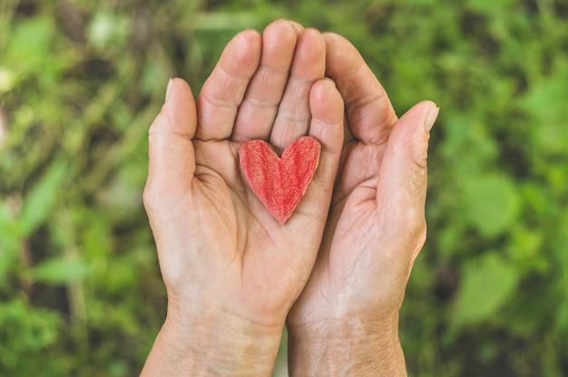 Oude hand grootmoeder greep hart