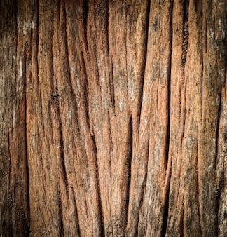 Oude hout gebarsten textuur naadloze boomschors textuur
