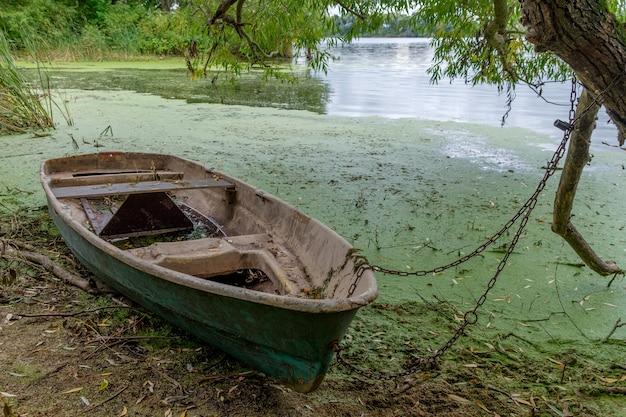 Oude houten boot op de rivier onder de takken van een boom