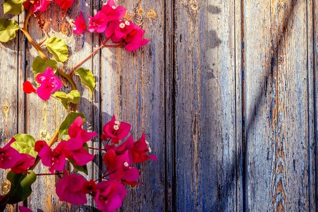 Oude houten deur met bougainvillea