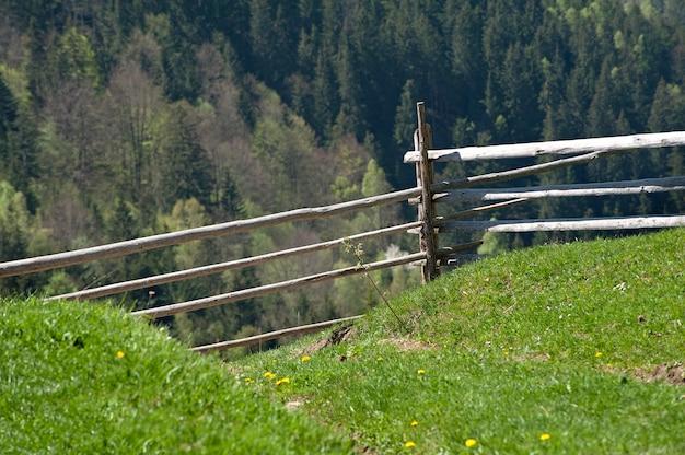 Oude houten gebroken hek in het bos. een zonnige dag op het platteland